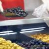 Zeytin çekirdeği yutmak faydalı mı?