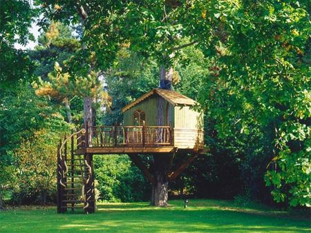treehouses09