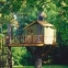 En güzel ağaç evleri